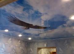 Выбираем картинки для фотопечати на натяжных потолках — фотобанк Шутерсток