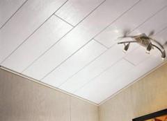Различные виды и применение панелей на потолок