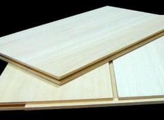 Плюсы и минусы, варианты применения деревянных панелей для потолка и стен