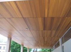 Преимущества, недостатки и порядок отделки потолка деревянными панелями