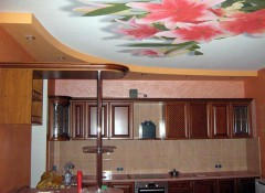 Варианты применения на кухне натяжных потолков с фотопечатью