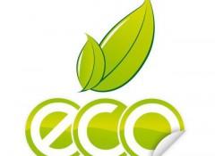 Какие потолки являются экологически чистыми?