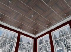 Плюсы, минусы и порядок монтажа панельных подвесных потолков
