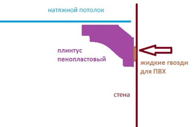 mdnp6