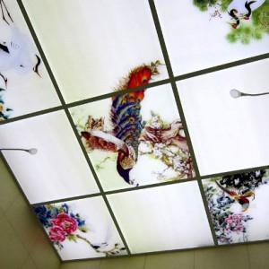 Витражные потолки в японском стиле