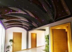 Виды и особенности объемных натяжных потолков