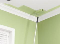 Потолок из гипсокартона — какой краской лучше красить?