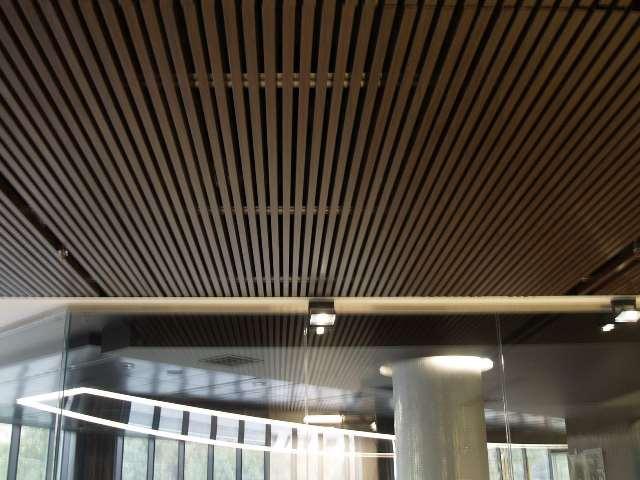 Typy úradných stropov