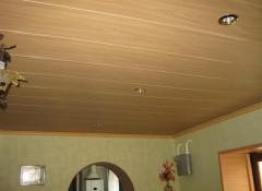 Использование в зале потолков из пластиковых панелей
