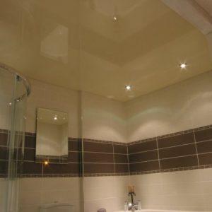 Варианты оформления потолка в санузле