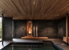 Крытый бассейн частного дома — какой потолок сделать?