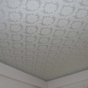 Особенности и виды натяжных потолков с тистением
