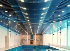 Из чего лучше сделать потолок в бассейне?