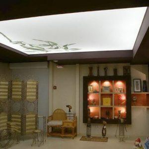 Особенности и возможности светопроницаемых натяжных потолков