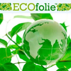 Особенности и характеристики натяжных потолков ecofolie