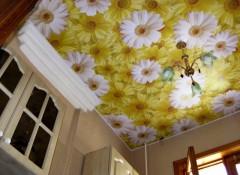 Натяжной потолок с ромашками — особенности и применение