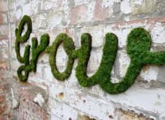 Как на стене делать надписи мхом?