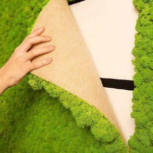 Как своими руками сделать стену из мха