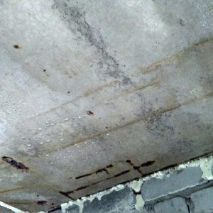 Что делать, если в гараже мокрый потолок?