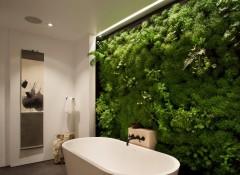 Как из искусственных растений сделать зеленую стену?