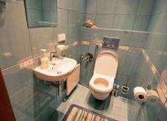Основные варианты отделки стен в туалете