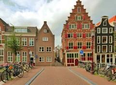 Использование в архитектуре голландского стиля