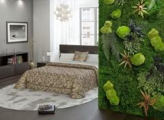 Особенности и создание в квартире живой стены из растений